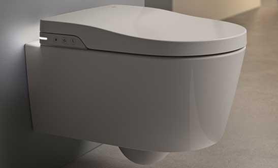 in wash de roca un wc lavant suspendu ou sur pied. Black Bedroom Furniture Sets. Home Design Ideas